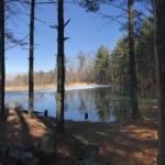 Photo by Meredith Rhoades of a pond near Dan Wowack's bushcraft school.